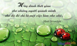 câu châm ngôn của albert Schweitzer