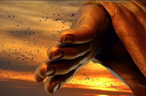 Phật dạy: con người nếu buông được 5 điều này thì cuộc sống sẽ nhàn hơn 10 phần