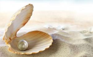 Vẻ đẹp của hạt ngọc trai và bài học đáng suy ngẫm